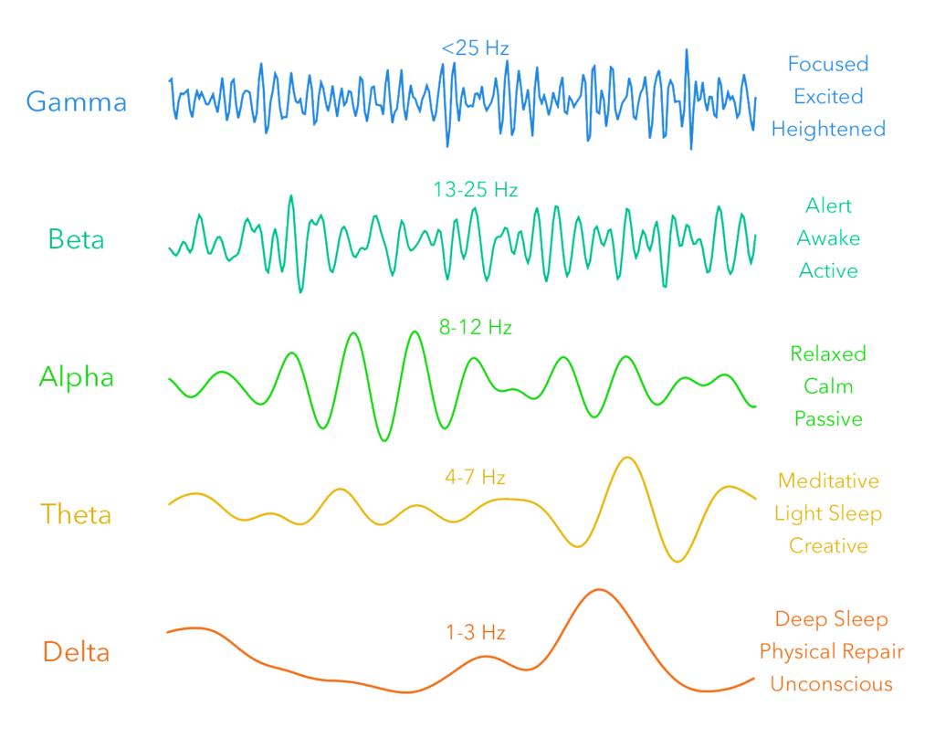 Types of brain waves